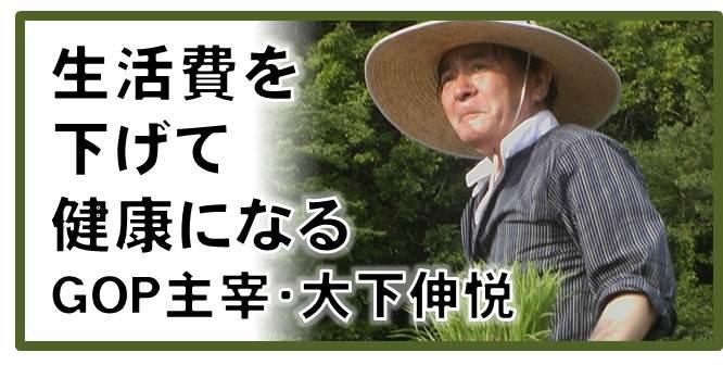 gop_ryusuibana.jpg
